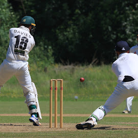 by John Davies - Sports & Fitness Cricket ( gloucestershire university, pontardawe cc, cricket, jd photography, swansea university, canon eos 7d mk2, university cricket )