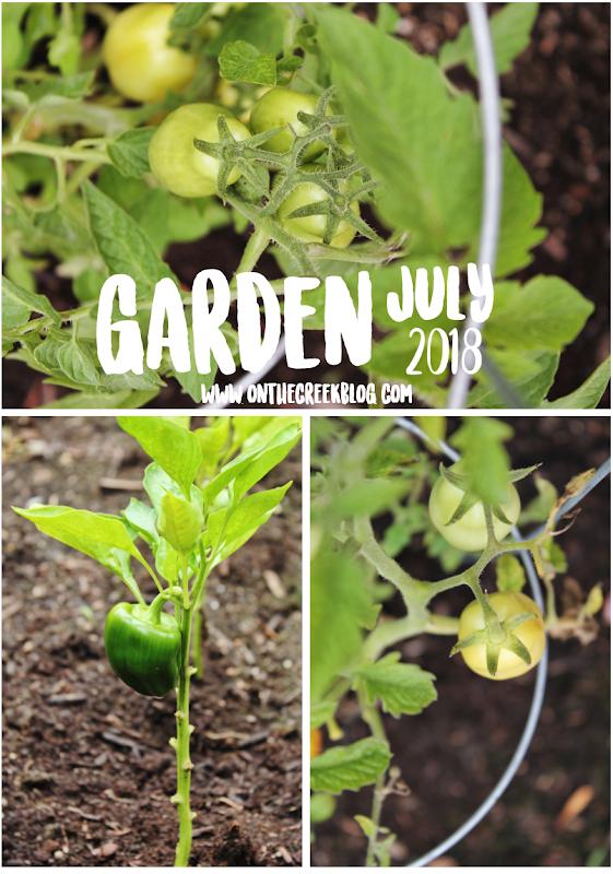 Garden Update | July 2018