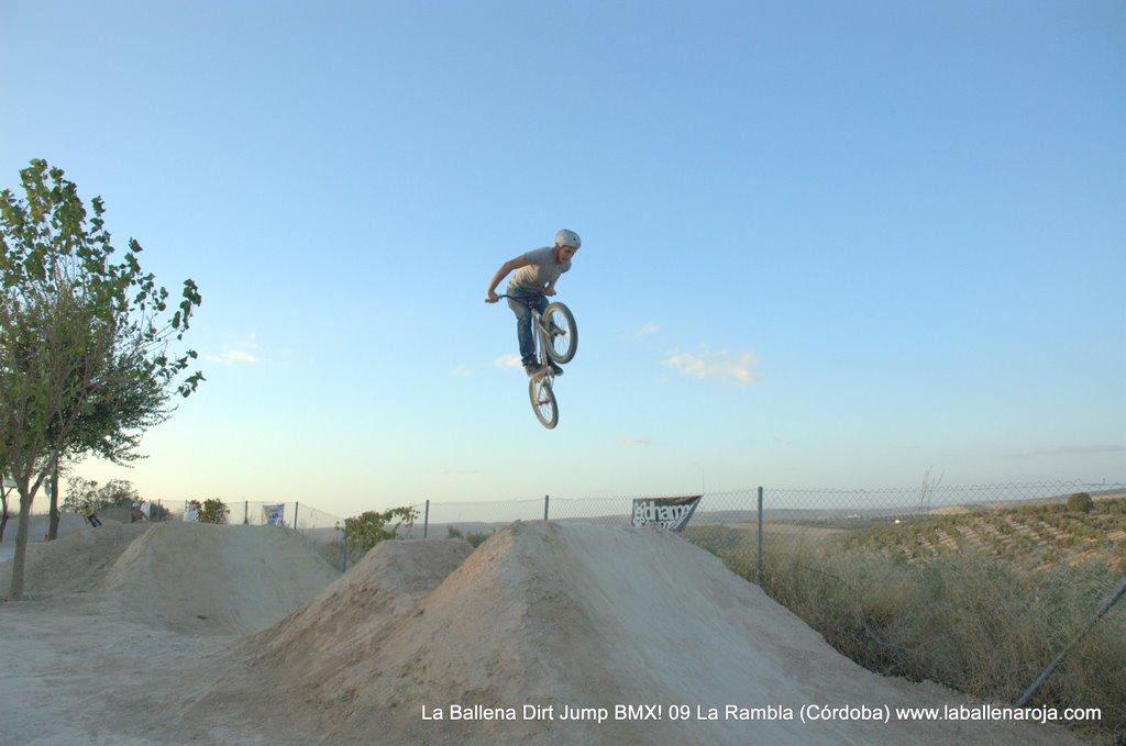 Ballena Dirt Jump BMX 2009 - BMX_09_0140.jpg