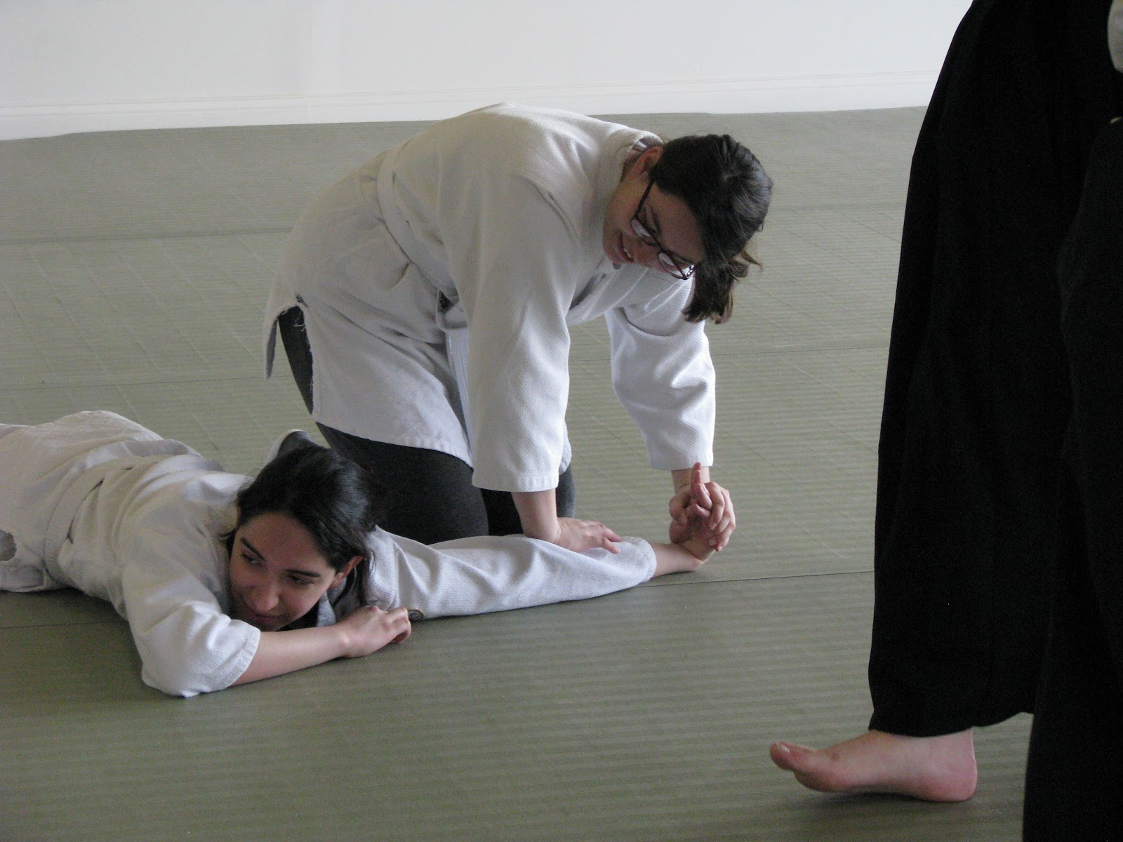 Moraine Valley Aikido Club at Soseikan Dojo April 2011 and Kyu makeup exam