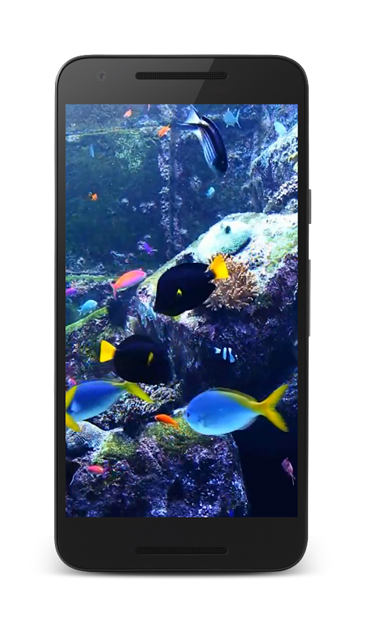 aquarium live video wallpaper android apps on google play. Black Bedroom Furniture Sets. Home Design Ideas