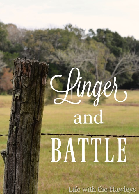 Linger and Battle- Life with the Hawleys