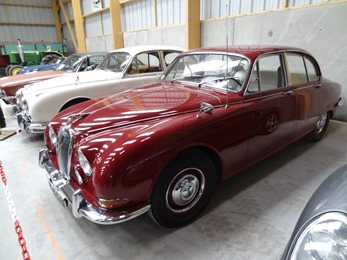 2017.05.14-030 Jaguar