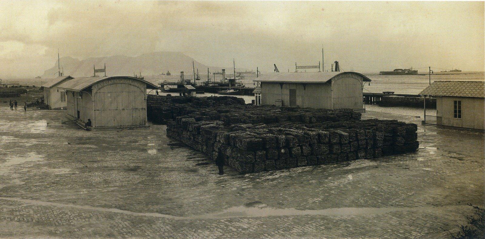 Algeciras Gibraltar Railway Companyltd Vida Marítima