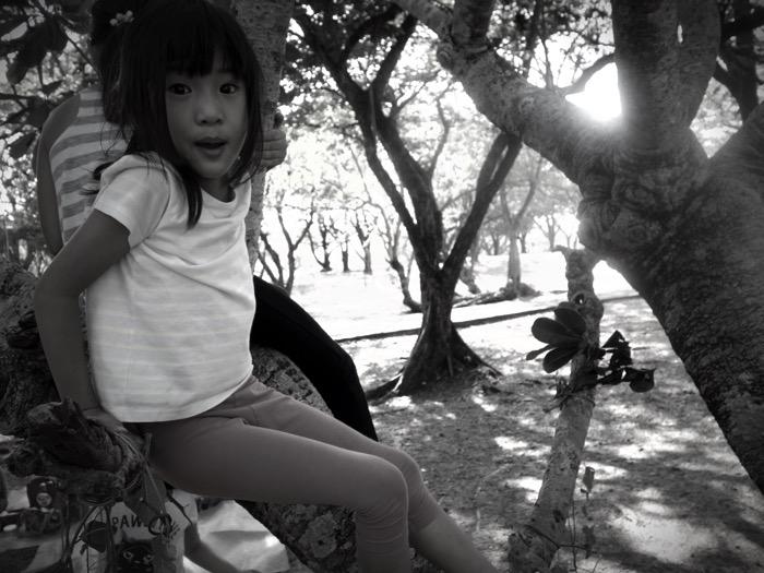 DSC02764 Fotor