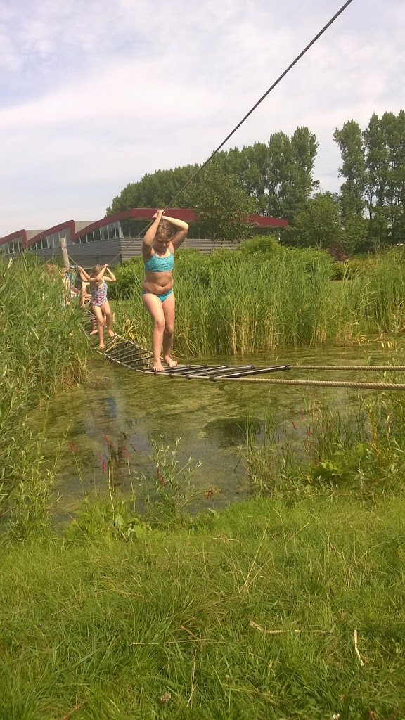 Welpen - Zomerkamp 2016 Alkmaar - WP_20160721_113.jpg