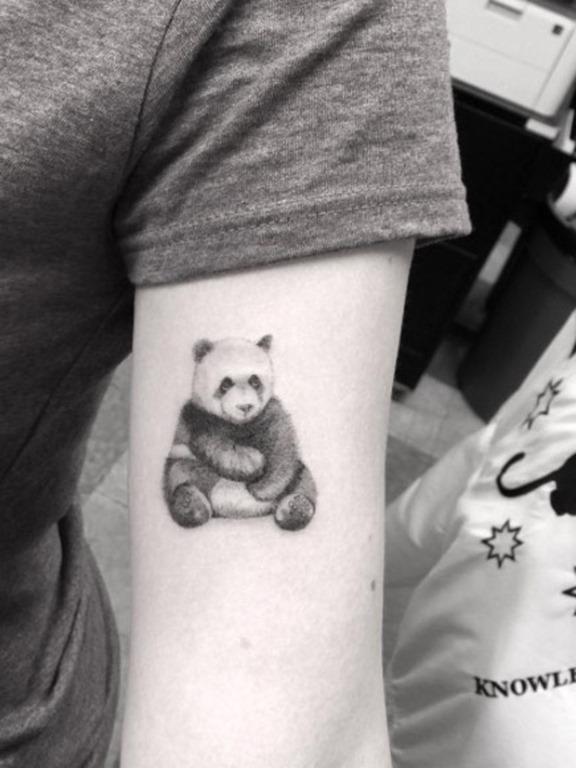 Este adorável panda
