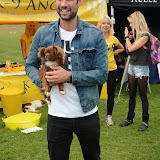 WWW.ENTSIMAGES.COM -     Matt Johnson   at        Pup Aid at Primrose Hill, London September 6th 2014Puppy Parade and fun dog show to raise awareness of the UK's cruel puppy farming trade. Pup Aid, the anti-puppy farming campaign started by TV Vet Marc Abraham, are calling on all animal lovers to contact their MP to support the debate on the sale of puppies and kittens in pet shops. Puppies & Celebrities Return To Fun Dog Show Fighting Cruel Puppy Farming Industry.                                              Photo Mobis Photos/OIC 0203 174 1069