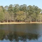 Little Pee Dee State Park.jpg