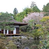 2014 Japan - Dag 8 - marjolein-IMG_1165-0060.JPG