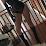 Ana Callahan-Roman (StratosphereNYC)'s profile photo