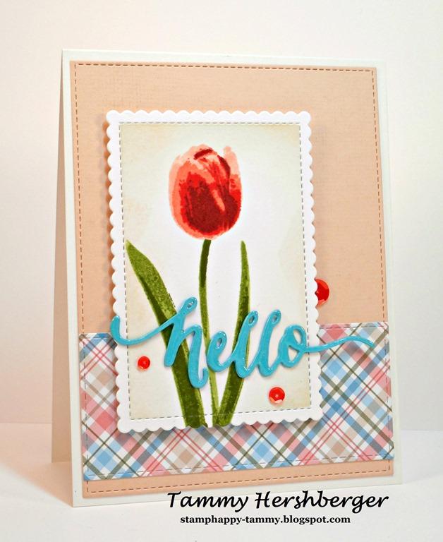[Hello+Tulip%5B4%5D]