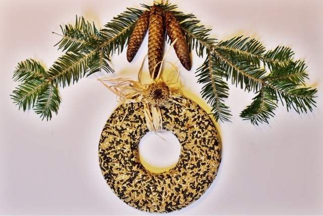 Nonesuch as this diy for the birds i saw a birdseed wreath a couple years ago at one of my favorite garden shops but it cost around 50 so i decided id be better off figuring out how to solutioingenieria Image collections