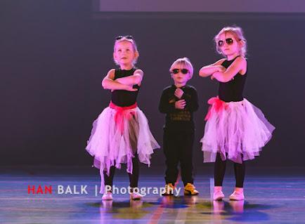 Han Balk Voorster Dansdag 2016-3343.jpg