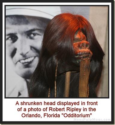 Shrunken head at Orlando Ripley's Odditorium