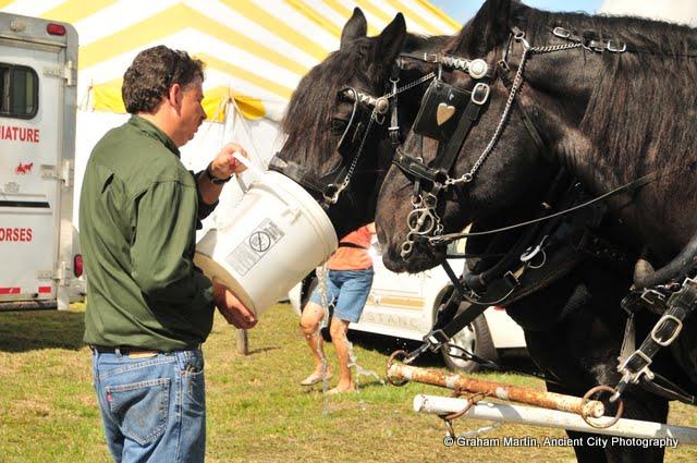 OLGC Harvest Festival - 2011 - GCM_OLGC-%2B2011-Harvest-Festival-56.JPG