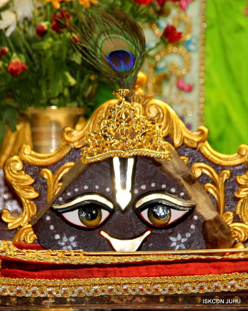ISKCON Juhu Mangal Deiy Darshan 10 Apr 16 (27)