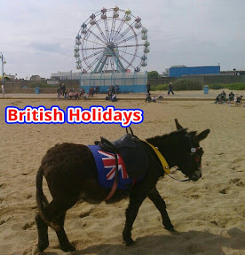 donkey with Union Jack saddle on sunny beach infront of fayre big wheel captioned British Holidays