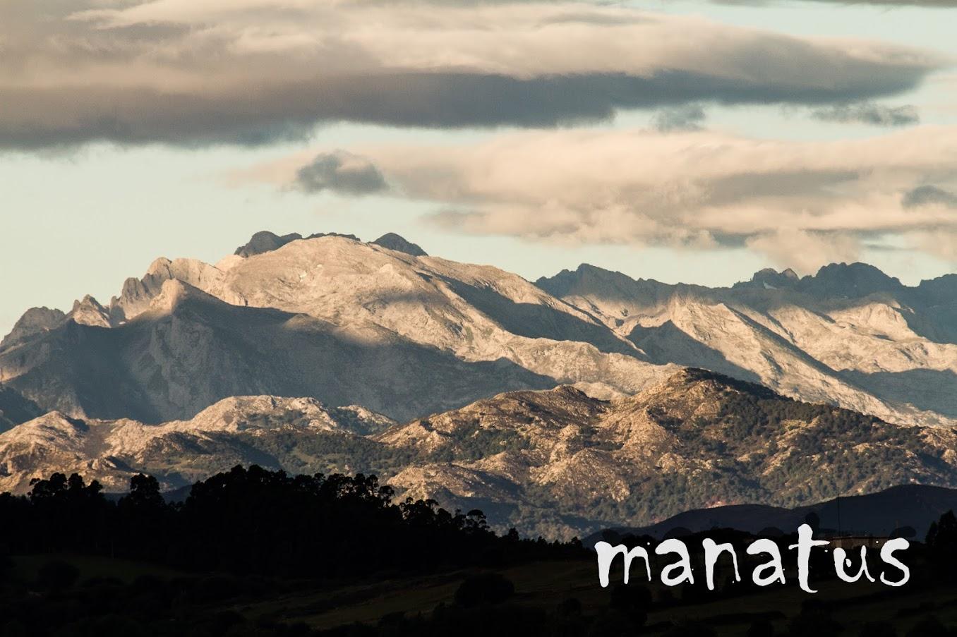 manatus foto blog picos de europa