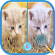 Download Find Differences 3 For PC Windows and Mac