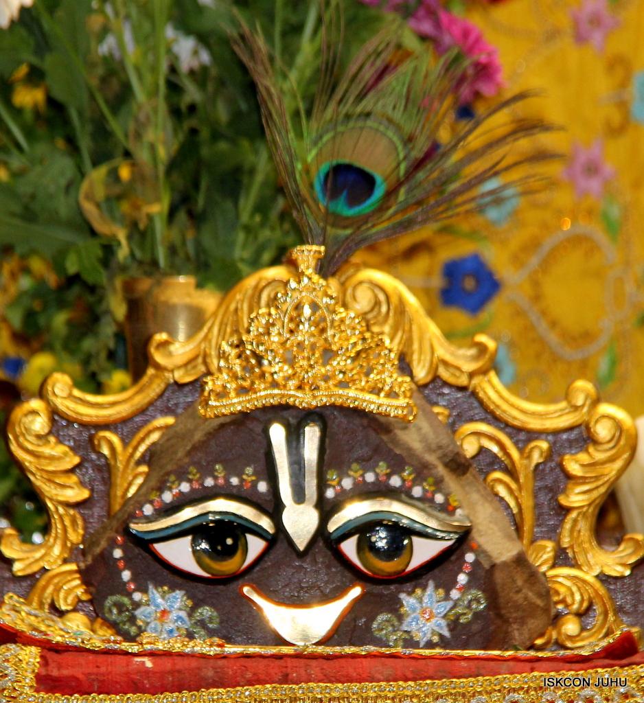 ISKCON Juhu Mangal Deity Darshan on 17th Jan 2017 (24)