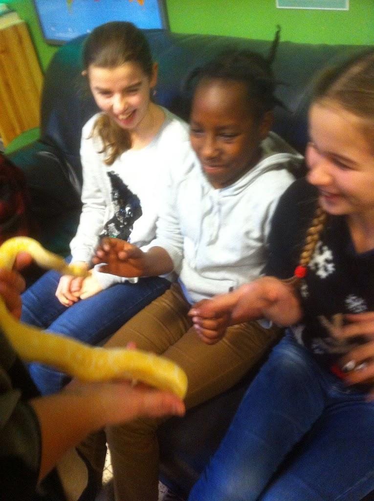 Slangen op bezoek bij de Kikkers - IMG_9205.JPG