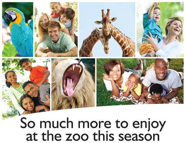 Zohannesburg Zoo