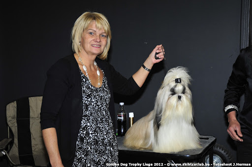 Golden Dog Trophy Liege 2012
