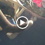 Schaatsen 2012 - OmkVt0dF-c8JJMYlyHjpcq7b0sgsx6o8cEkOgUjEVqpIU9irAzUtd3dRVWWs-8ZPmv2NEUaXKQ=m37