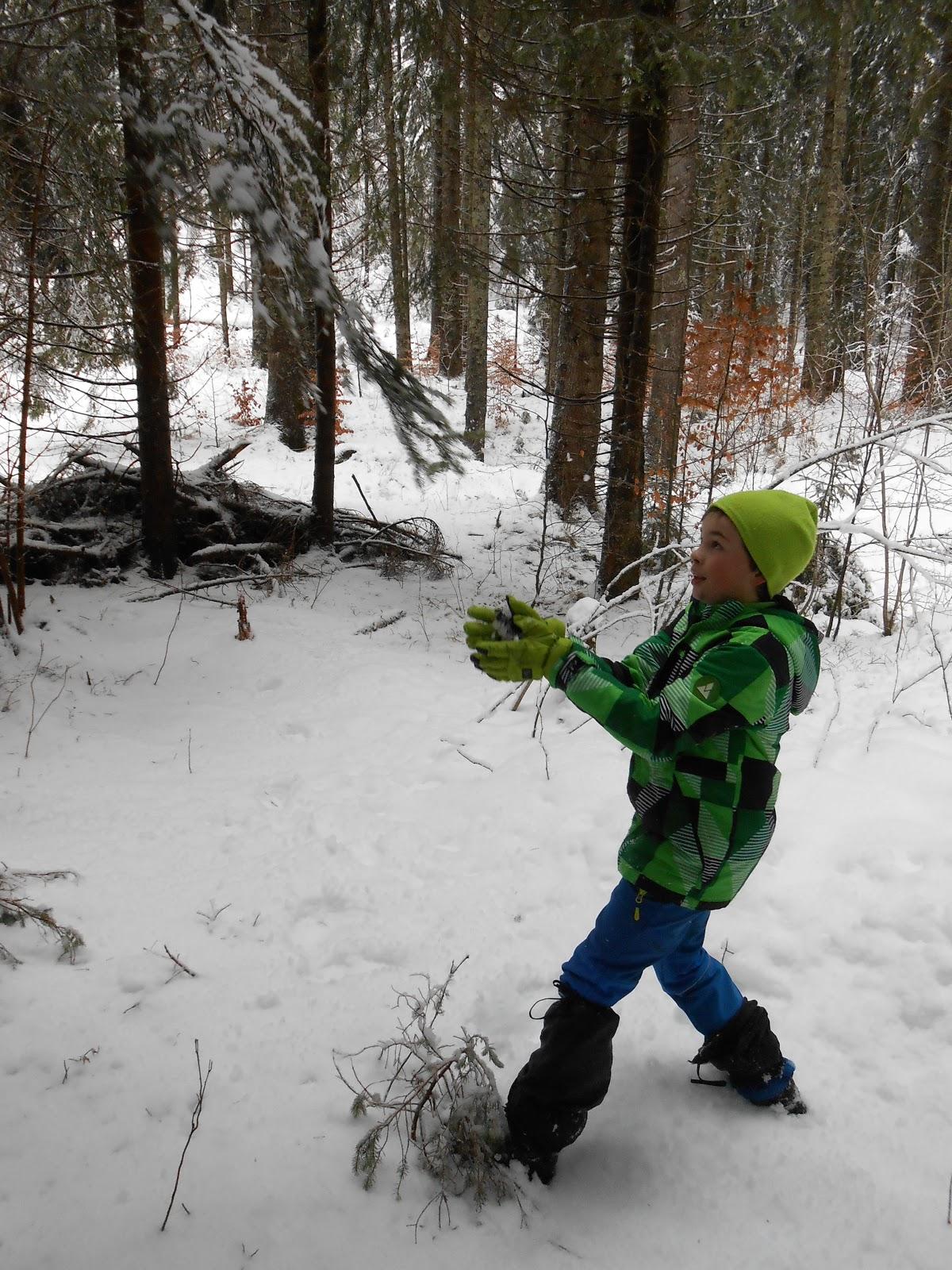 MČ zimovanje, Črni dol, 12.-13. februar 2016 - DSCN4989.JPG