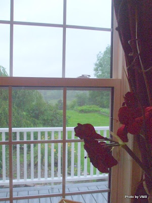 Window view form DesBarres Manor Inn in Guysborough