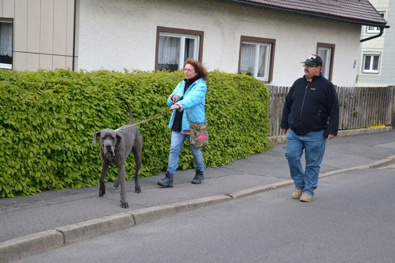 17. Mai 2016: On Tour in Pechbrunn - DSC_0297.JPG