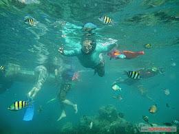 ngebolang-pulau-harapan-30-31-2014-pan-031
