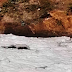 Sob risco de morte, rio Melchior em Samambaia recebe três vezes o seu volume em esgoto