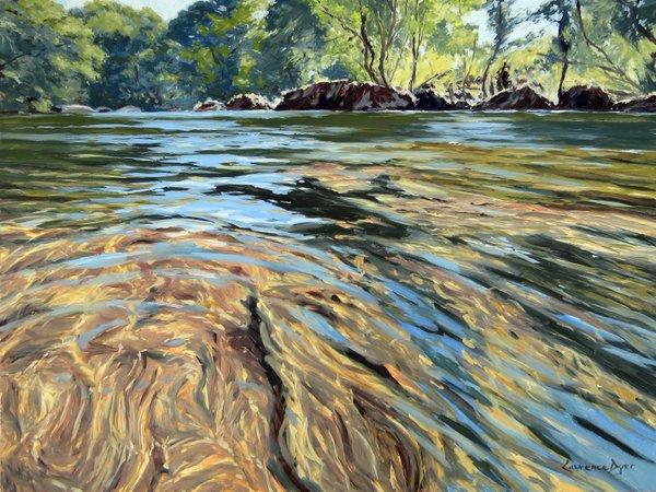 River Dart, Dartmoor. Artist Lawrence Dyer