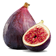 Download My Fig Farm Tree Tracker For PC Windows and Mac