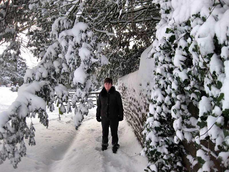 SnowCR19