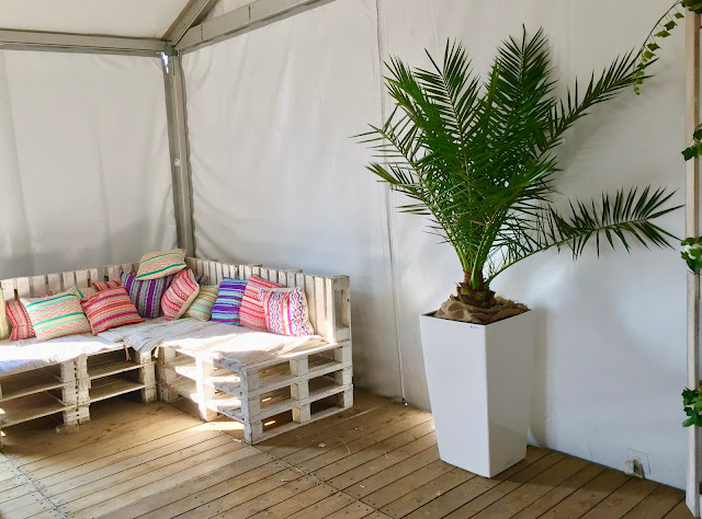 Phoenix palm plant boom huren voor zomerbar event part terras feest