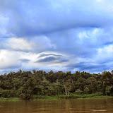 La Kinabatangan à Sukau, Sabah (Malaisie), 12 août 2014. Photo : T. Boucher