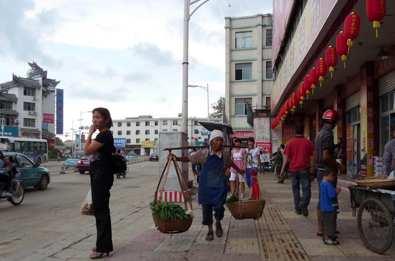 Chine.Yunnan Wen shan et BA MEI 1 - P1260826.JPG