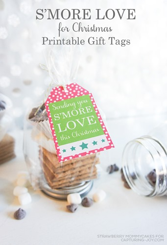 Smore-Love-for-Christmas-Printable-Gift-Tags2