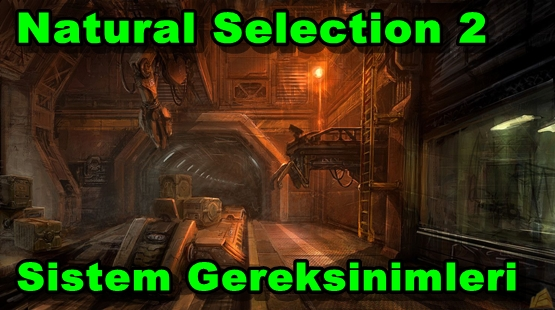 Natural Selection 2 PC Sistem Gereksinimleri