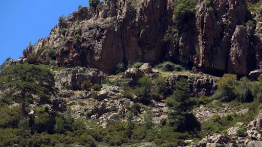 La vire de Manghja e Beie avec les murs des bergeries extérieures et les grottes abritant les bergeries sous roches