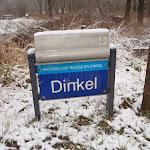 Dinkel 2