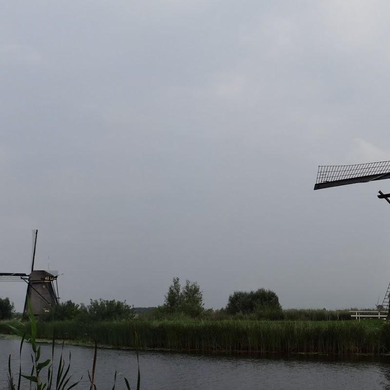 Day_6_Kinderdijk_35.JPG