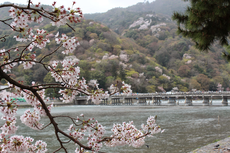 2014 Japan - Dag 8 - marjolein-IMG_1059-0026.JPG