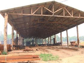 Ibama fecha serrarias que extraíam madeira em terras indígenas no PA