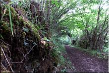 Camino de Turza --  2015eko ekainaren 14an