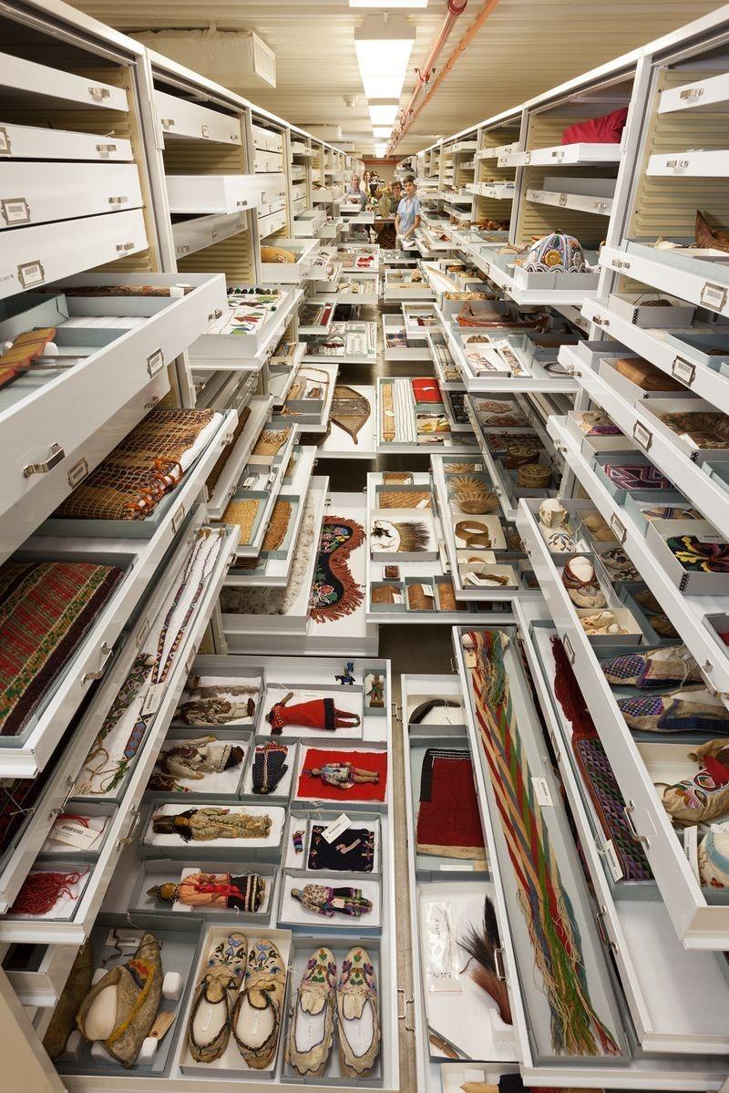 di storia naturale-museo-collezione-1