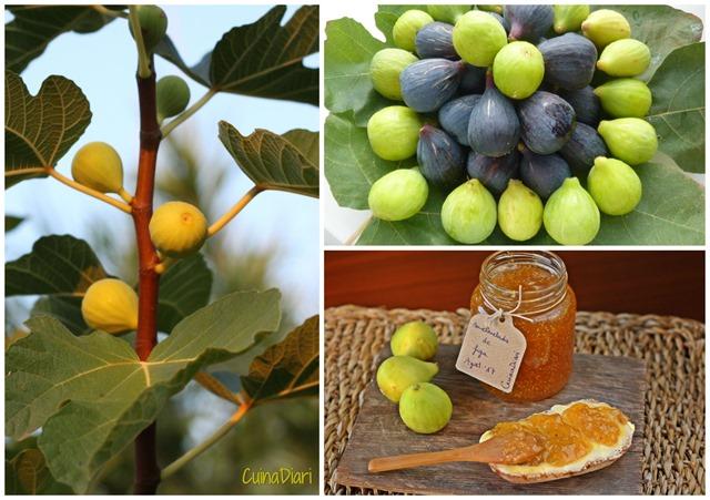6-6-melmelada figa cuinadiari
